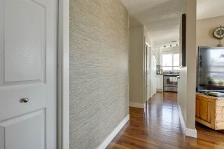 Photo 24: 15216 94 Street in Edmonton: Zone 02 House for sale : MLS®# E4239810