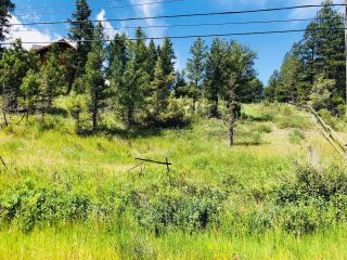 Photo 3: Lot 6 SWANSEA ROAD in Invermere: Vacant Land for sale : MLS®# 2457554