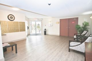 Photo 4: 218 32833 Landeau Place in Abbotsford: Central Abbotsford Condo for sale : MLS®# R2603347