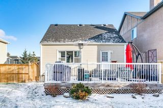 Photo 40: 4641 20 Street SW in Calgary: Altadore Detached for sale : MLS®# A1089417