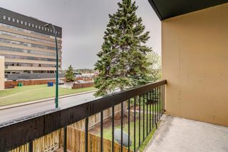 Photo 29: 212 7007 4A Street SW in Calgary: Kingsland Apartment for sale : MLS®# A1112502