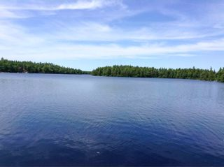 Photo 5: Lot 26 Alexander Avenue in Waterloo Lake: 400-Annapolis County Vacant Land for sale (Annapolis Valley)  : MLS®# 202104820