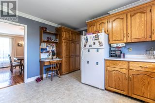 Photo 18: 10 LaManche Place in St. John's: House for sale : MLS®# 1236570