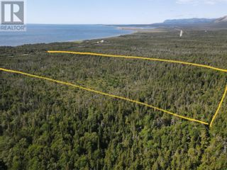 Photo 3: 2 Hynes Road Unit#ROUTE 460 in Port Au Port East: Vacant Land for sale : MLS®# 1233625
