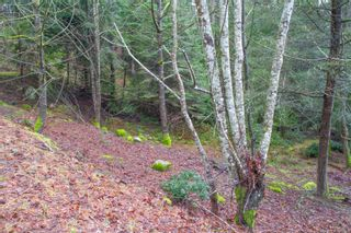 Photo 6: 2604 Yardarm Rd in : GI Pender Island Land for sale (Gulf Islands)  : MLS®# 863927