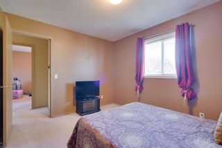 Photo 35: 256 COVENTRY Green NE in Calgary: Coventry Hills Detached for sale : MLS®# A1024304