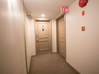 Photo 2:  in Edmonton: Garneau Condo for sale