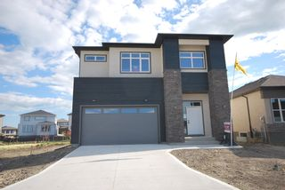 Photo 1: 245 Willow Creek Road in Winnipeg: Bridgwater Trails Single Family Detached for sale (1R)