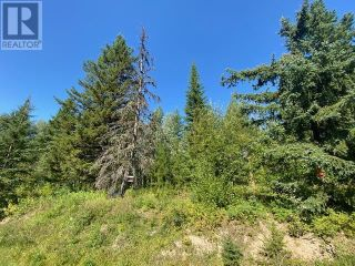 Photo 25: 1450 TERRACE ROAD in Quesnel: Vacant Land for sale : MLS®# R2609503