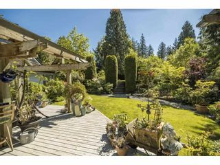 """Photo 29: 17332 26A Avenue in Surrey: Grandview Surrey House for sale in """"Country Woods"""" (South Surrey White Rock)  : MLS®# R2557328"""