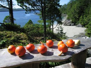 Photo 4: LT 2 Catface Mountain in TOFINO: PA Tofino Land for sale (Port Alberni)  : MLS®# 827016