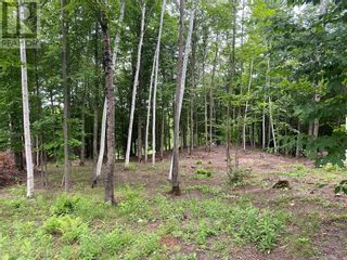 Photo 7: Lot 1 Indian Mountain Lane in Nemi: Vacant Land for sale : MLS®# 2097541