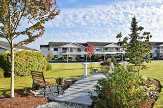 "Photo 21: 114 32691 GARIBALDI Drive in Abbotsford: Central Abbotsford Condo for sale in ""Carriage Lane"" : MLS®# R2505717"