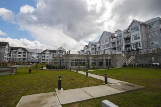 "Photo 19: 205 3148 ST JOHNS Street in Port Moody: Port Moody Centre Condo for sale in ""SONRISA"" : MLS®# R2171149"