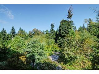 Photo 13: 406-580 RAVEN WOODS DR in North Vancouver: Roche Point Condo for sale : MLS®# V1025829