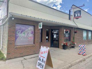 Photo 11: 4908 50 Street: Millet Retail for sale : MLS®# E4218060