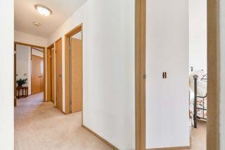 Photo 13: 1211 LAKEWOOD Road N in Edmonton: Zone 29 House for sale : MLS®# E4266404