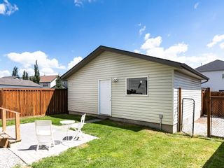 Photo 25: 117 COPPERFIELD Garden SE in Calgary: Copperfield Detached for sale : MLS®# C4191601