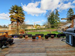 Photo 20: 784 Daisy Ave in : SW Marigold House for sale (Saanich West)  : MLS®# 866590