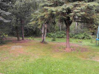 Photo 18: 5234 Ravine Drive: Elk Point House for sale : MLS®# E4211315