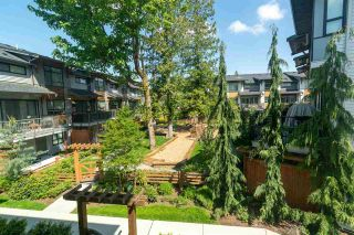 """Photo 28: 59 8508 204 Street in Langley: Willoughby Heights Townhouse for sale in """"Zetter Place"""" : MLS®# R2584531"""