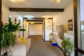 Photo 17: 105 1526 GEORGE Street: White Rock Condo for sale (South Surrey White Rock)  : MLS®# R2554568