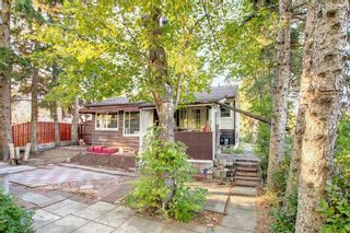 Photo 39: 1235 20 Avenue NW in Calgary: Capitol Hill Detached for sale : MLS®# A1146837