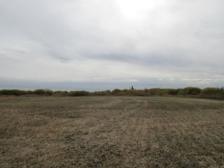 Photo 4: 55101 RR 270: Rural Sturgeon County Rural Land/Vacant Lot for sale : MLS®# E4265205