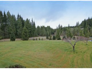 Photo 18: 12476 POWELL ST in Mission: Stave Falls House for sale : MLS®# F1409848