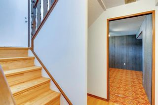 Photo 18: 40 Rundlewood Bay NE in Calgary: Rundle Detached for sale : MLS®# A1141150