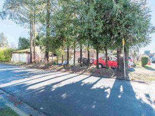 Photo 23: 12060 EDGE Street in Maple Ridge: East Central Duplex for sale : MLS®# R2535359