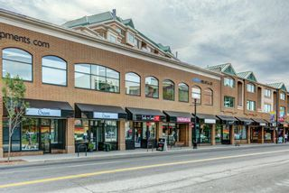 Photo 38: 101 1211 GLADSTONE Road NW in Calgary: Hillhurst Apartment for sale : MLS®# A1100282