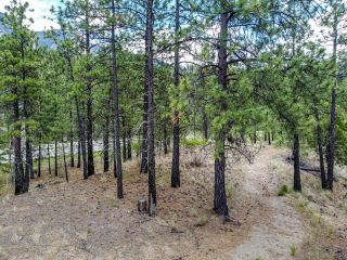Photo 8: 1215 HIGHWAY 12: Lillooet Lots/Acreage for sale (South West)  : MLS®# 160618