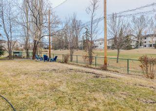 Photo 45: 85 DOUGLASVIEW Rise SE in Calgary: Douglasdale/Glen Detached for sale : MLS®# A1098776