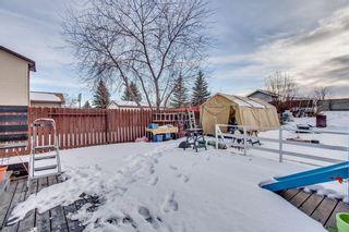 Photo 40: 111 ERIN RIDGE Road SE in Calgary: Erin Woods House for sale : MLS®# C4162823