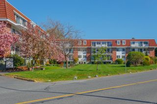 Photo 3: 304 1680 Poplar Ave in : SE Mt Tolmie Condo for sale (Saanich East)  : MLS®# 873736