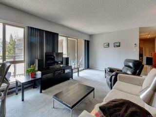 Photo 4:  in : Vi Fernwood Condo for sale (Victoria)  : MLS®# 883981
