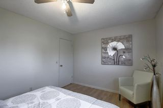 Photo 17: 48 DOVERTHORN Place SE in Calgary: Dover Detached for sale : MLS®# A1023255