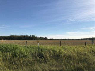 Photo 9: 57525 Rg Rd 214: Rural Sturgeon County Rural Land/Vacant Lot for sale : MLS®# E4192257