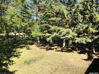 Photo 9: 290 2nd Avenue East in Englefeld: Residential for sale : MLS®# SK828666