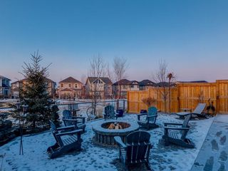 Photo 45: 339 HILLCREST Heights SW: Airdrie Detached for sale : MLS®# A1061984