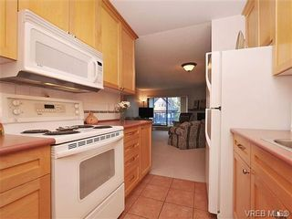 Photo 3: 207 420 Parry Street in VICTORIA: Vi James Bay Residential for sale (Victoria)  : MLS®# 332096