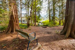 Photo 30: 1936 MACKAY Avenue in North Vancouver: Pemberton Heights House for sale : MLS®# R2621071