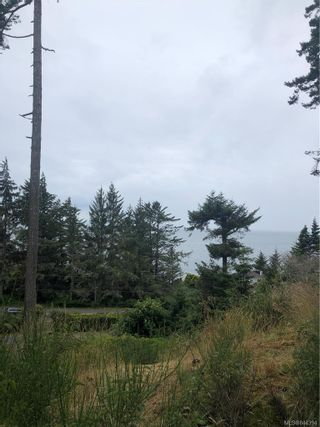 Photo 46: 8570 West Coast Rd in Sooke: Sk West Coast Rd House for sale : MLS®# 844394