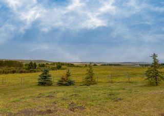 Photo 18: 322188 135 Street W: Rural Foothills County Detached for sale : MLS®# A1131052