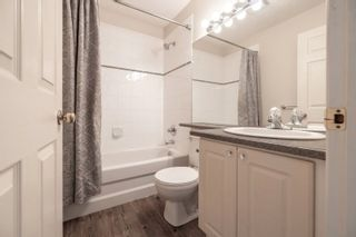 """Photo 31: 42 14877 58 Avenue in Surrey: Sullivan Station Townhouse for sale in """"REDMILL"""" : MLS®# R2603819"""
