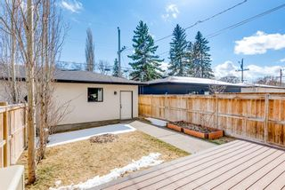 Photo 50: 507 28 Avenue NW in Calgary: Mount Pleasant Semi Detached for sale : MLS®# A1097016