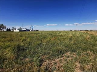 Photo 22: On Hwy 5 Highway in Magrath: NONE Agri-Business for sale : MLS®# A1034195