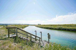 Photo 20: 16397 40 Avenue in Surrey: Serpentine Land for sale (Cloverdale)  : MLS®# R2586709
