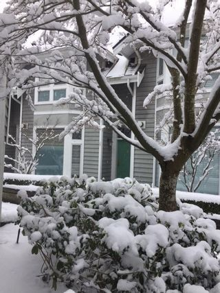 """Photo 9: 8 233 E 6TH Street in North Vancouver: Lower Lonsdale Townhouse for sale in """"ST. ANDREWS HOUSE"""" : MLS®# R2429678"""